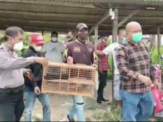 Ratusan Penonton Dan Peserta Lomba Adu Burung Di Bubarkan Polisi